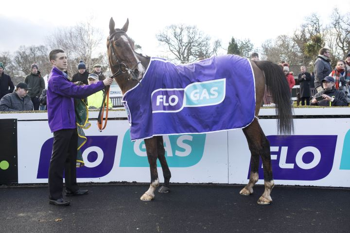 Monalee thrills the crowds in Flogas Novice Chase